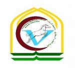 Curriculum of training courses