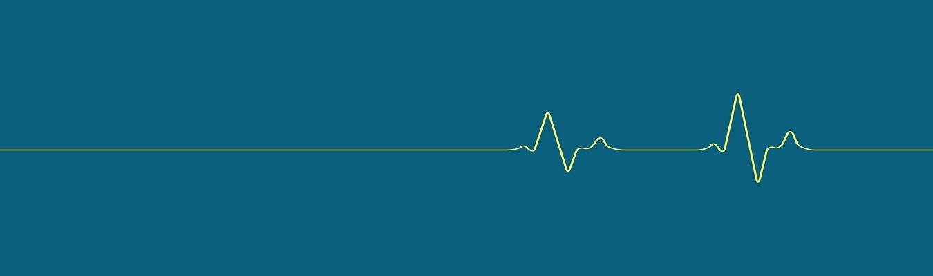 إستحداث دراسة الماجستير في تخصص الصحة العامة بكلية الطب البيطري في جامعة كربلاء