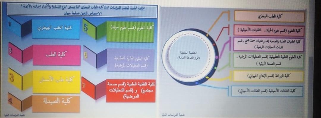 الخلفية العلمية ومواد الامتحان التنافسي للمتقدمين للدراسات العليا (ماجستير)